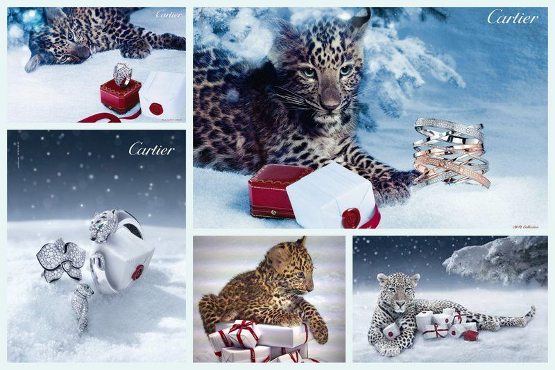 Cartier Christmas Most beautiful Jewelry