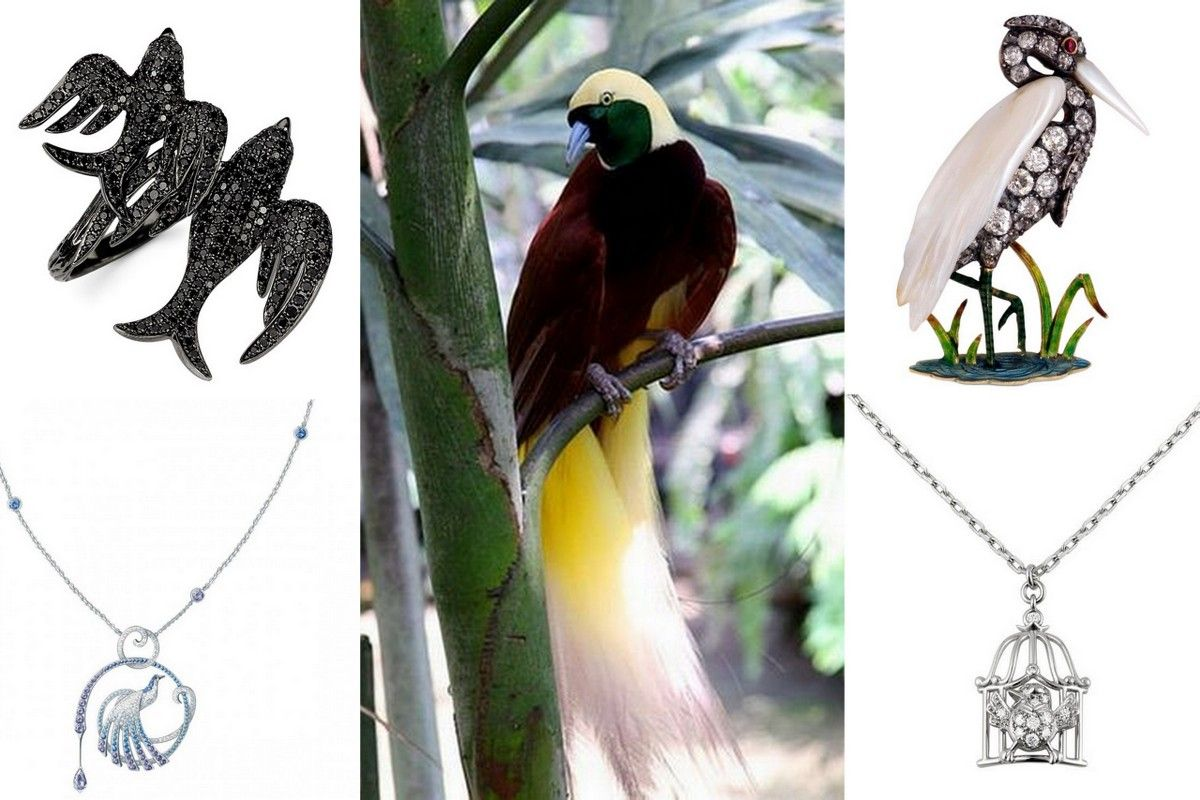 Bird jewelry-pendant necklace ring