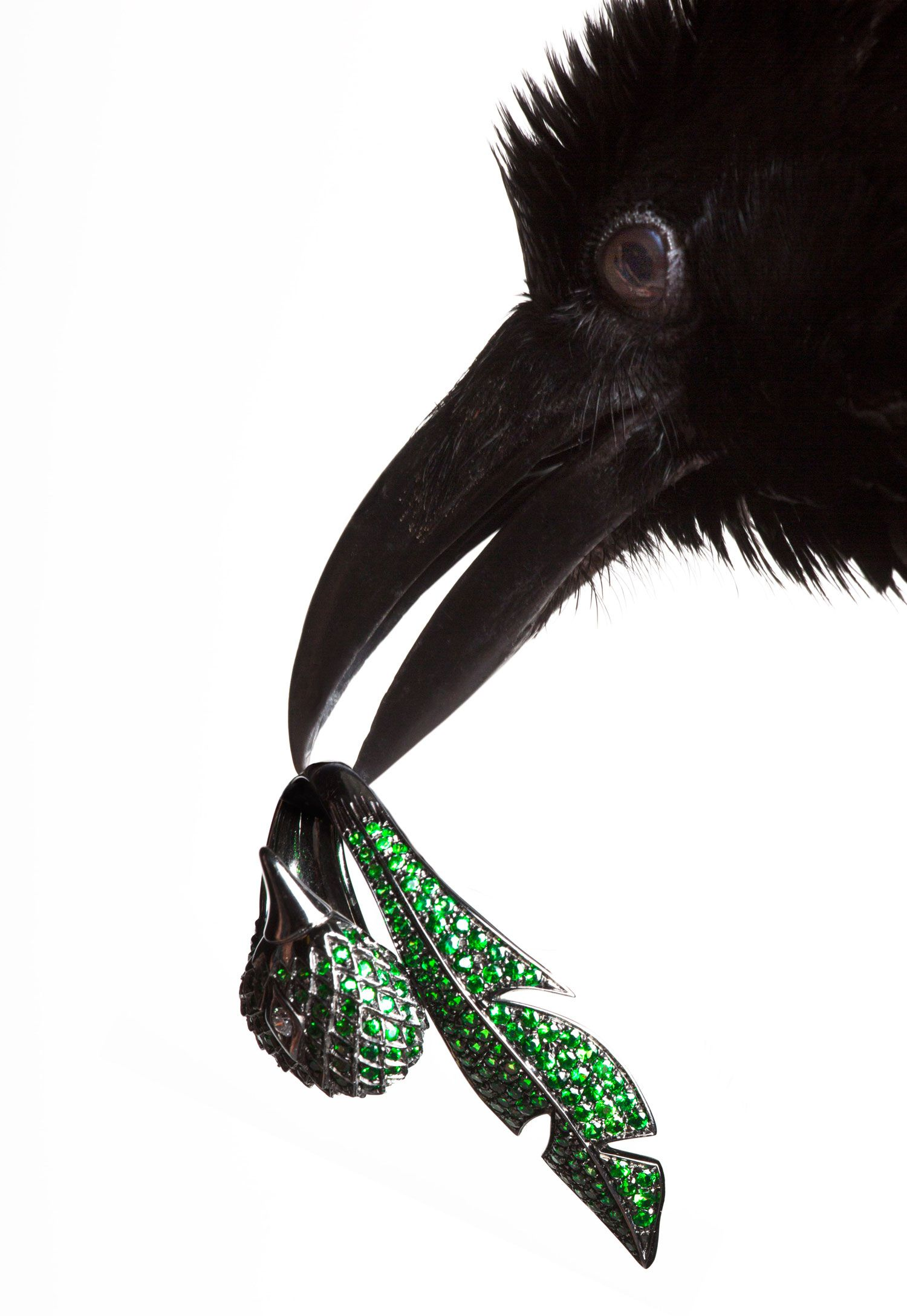 torkil gudnason animal jewelry bird