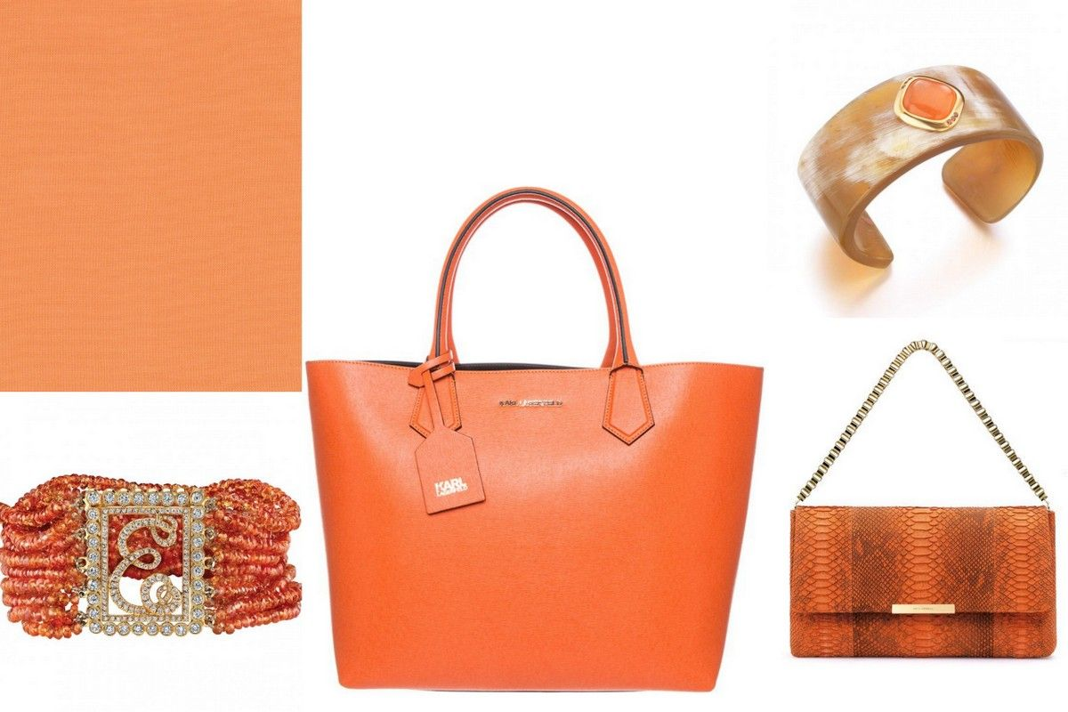 Trend colors 2015 orange jewelry bag