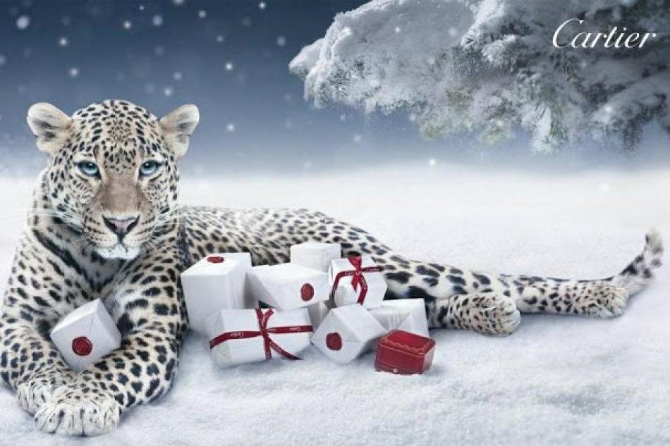 Christmas, jewelry and gratitude