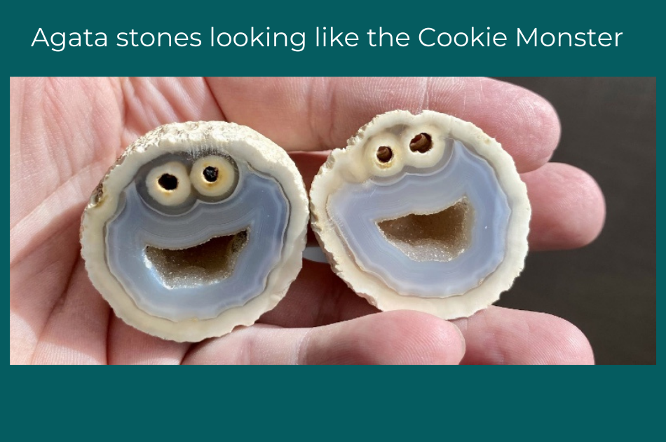 Rare rocks that look like...Cookie Monster!